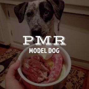 pmr-dog