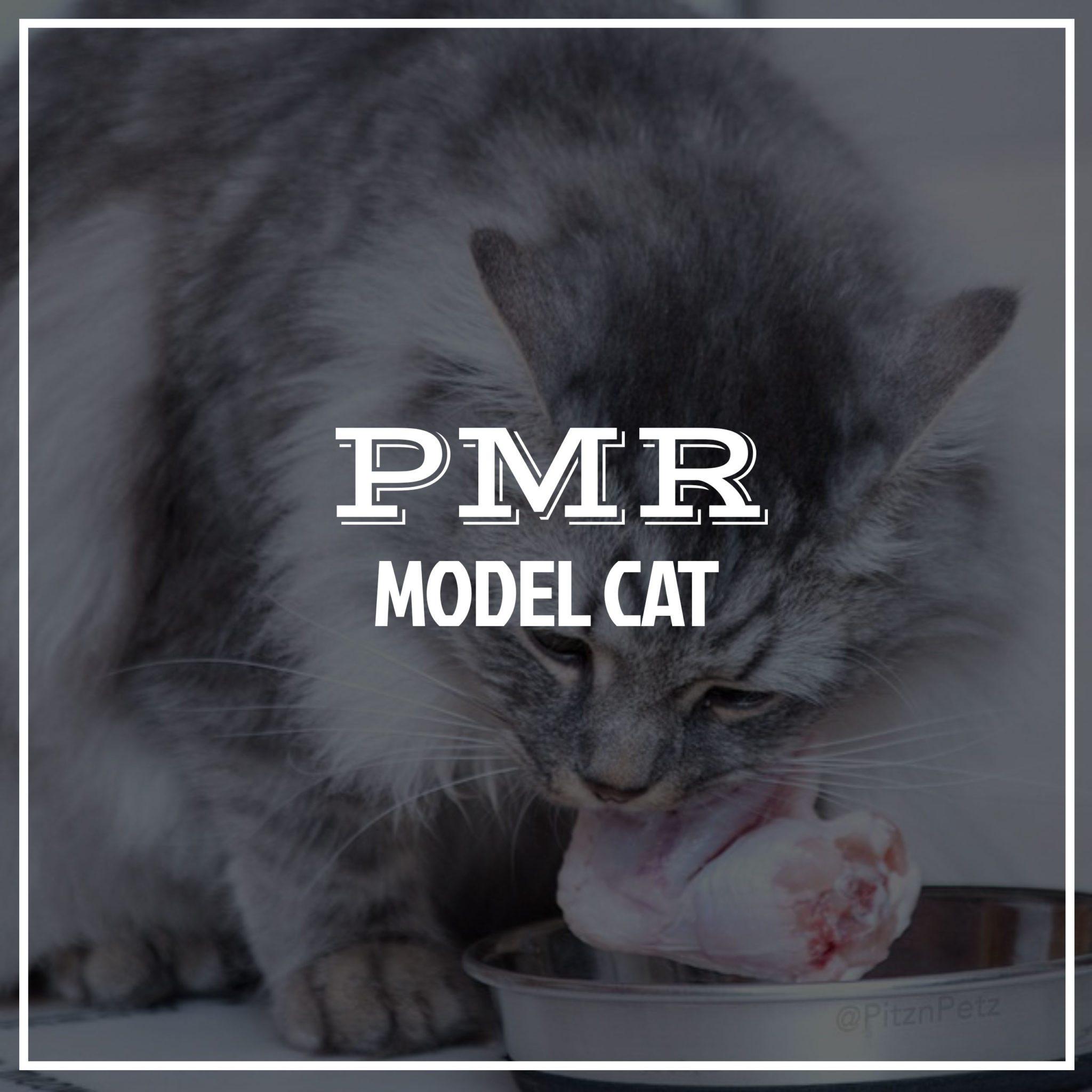 pmrcatmodel