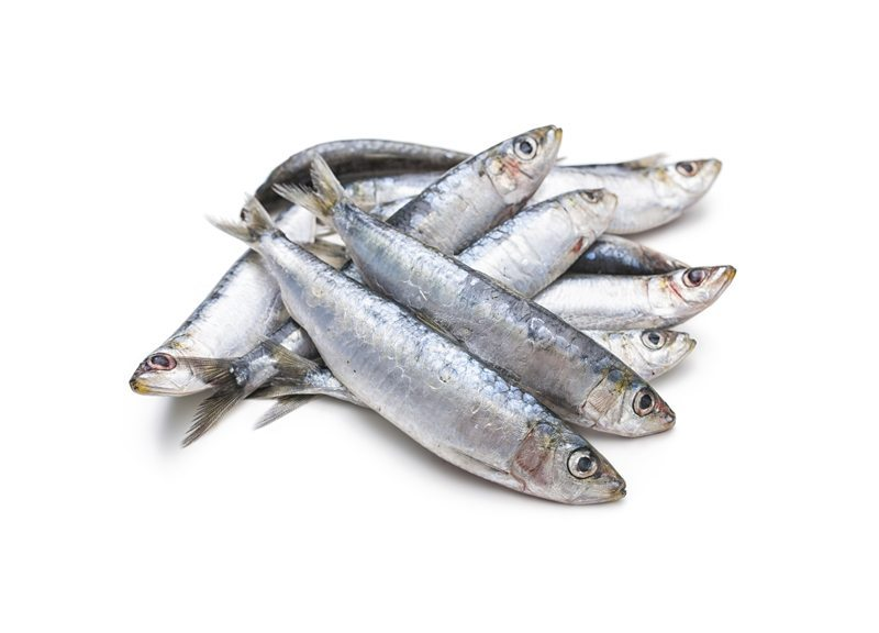 Sardines Nutrition Facts - Eat This Much