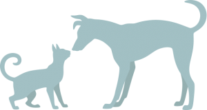 raw feeding information to feed dogs and cats a raw diet