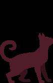 cat-maroon