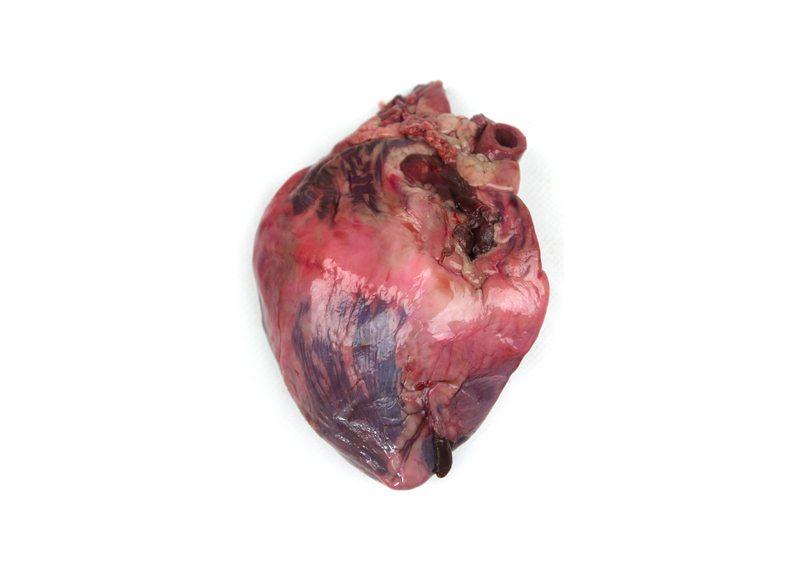 rawheart