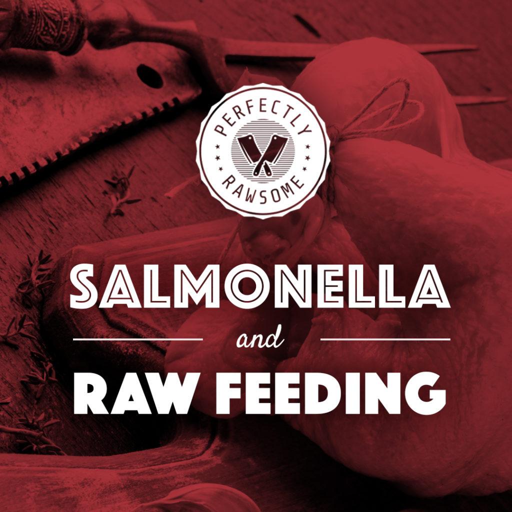 rawfeedingdiet