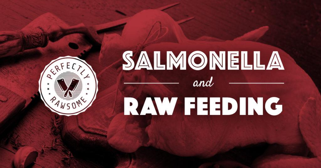 rawfeedingforpets