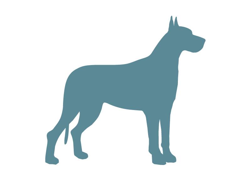 giantdogbreed