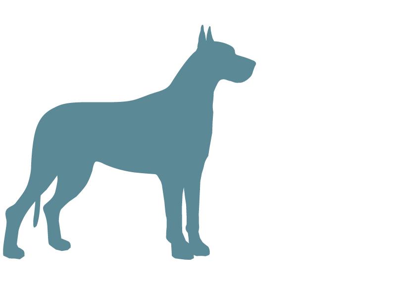 giantdogbreeds