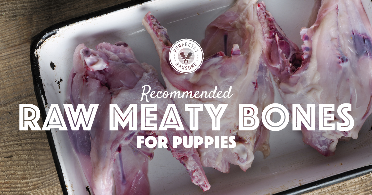 Recommended Raw Meaty Bones for Puppies
