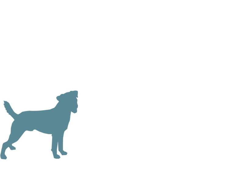 smalldogbreed