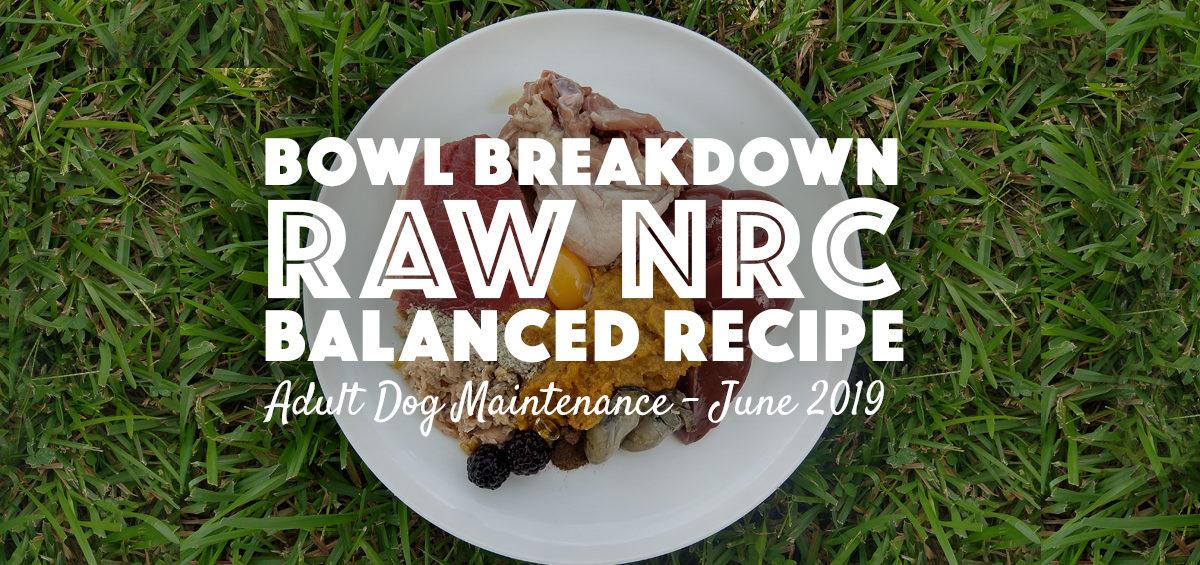 rawnrcbalancedrecipe