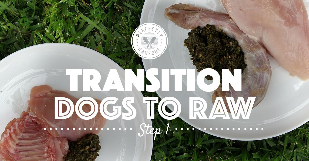 Adult Dog Raw Feeding Transition Step 1