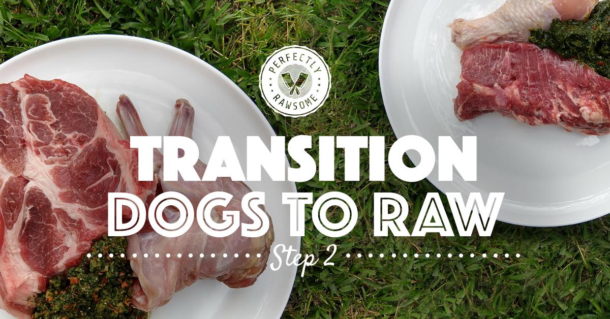 Adult Dog Raw Feeding Transition Step 2