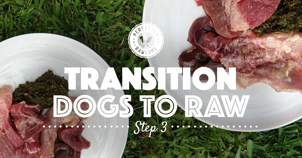 Adult Dog Raw Feeding Transition Step 3