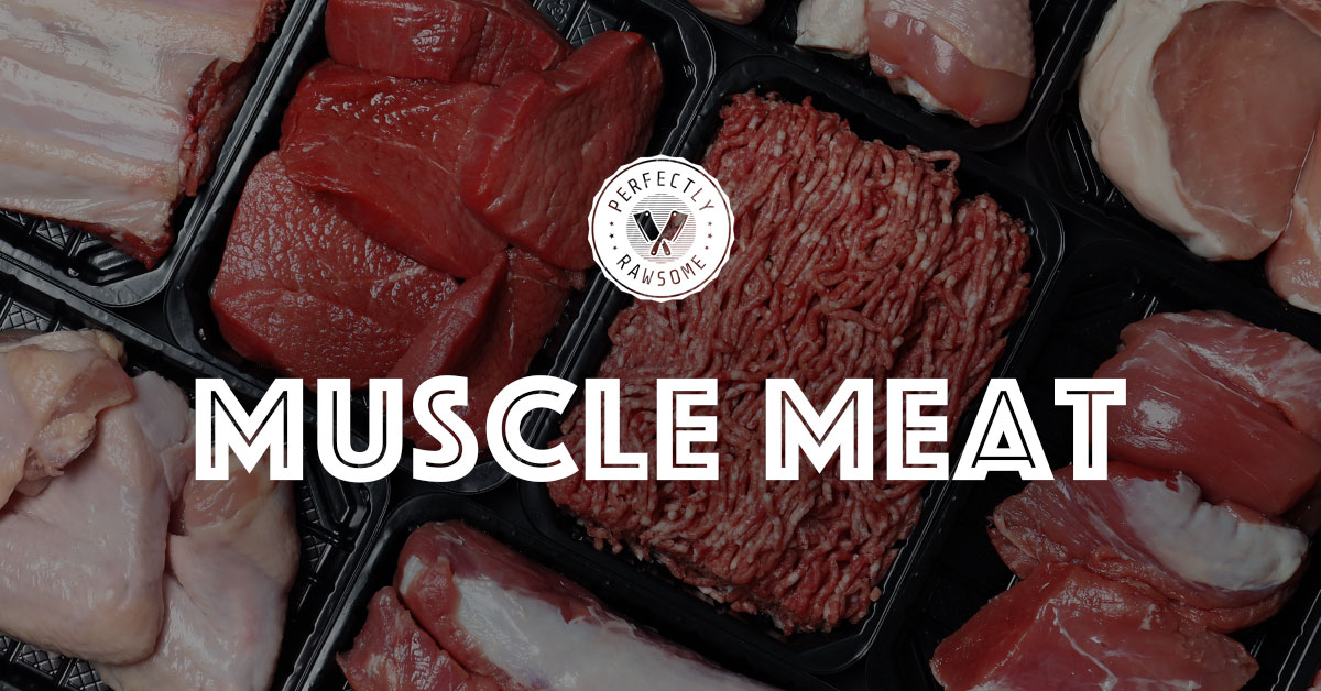 Muscle Meat in Raw Diets