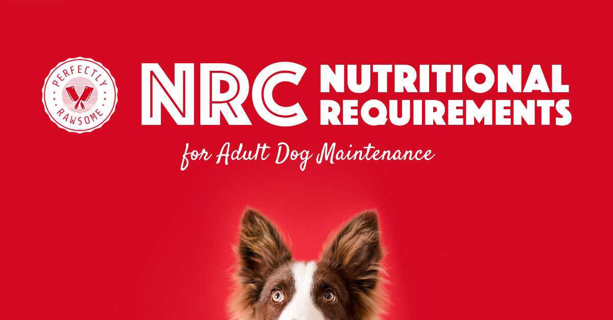 Adult Dog Nutritional Requirements