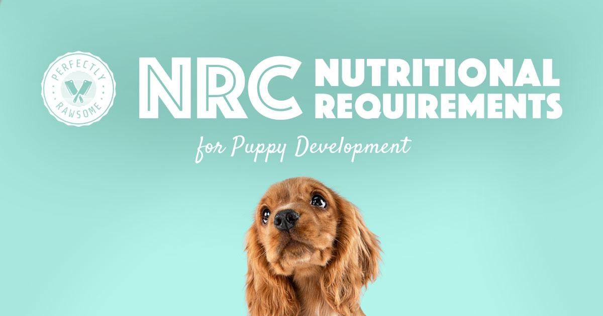 Puppy Development Nutritional Requirements