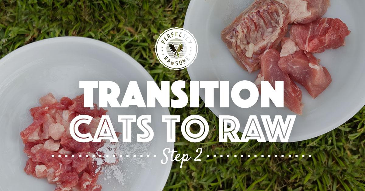 Adult Cat Raw Feeding Transition Step 2