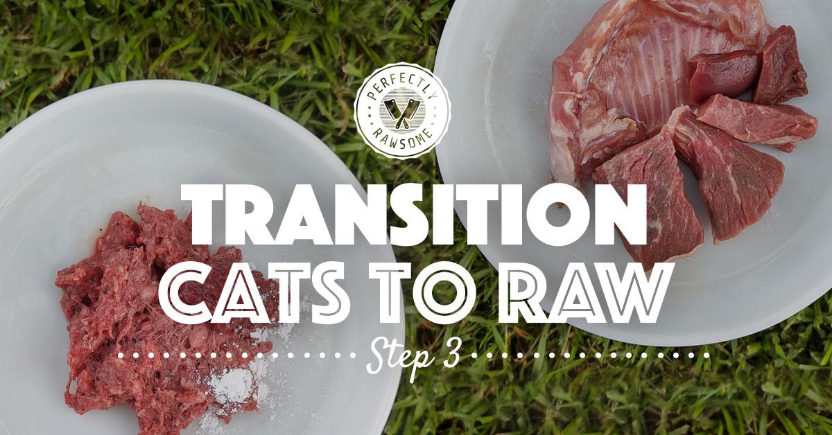 Adult Cat Raw Feeding Transition Step 3